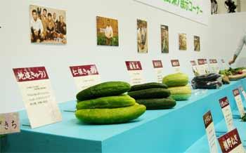 山口県の伝統野菜・果樹がいちどうに集まる