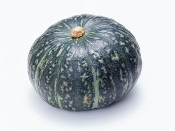 かぼちゃ(南瓜) 伝播・歴史