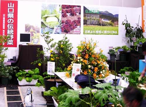 山口県の伝統野菜・果樹 食の祭典 農を考える